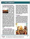 0000082800 Word Templates - Page 3