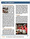 0000082813 Word Templates - Page 3