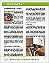0000082817 Word Template - Page 3