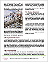0000082817 Word Template - Page 4
