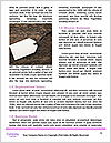 0000082819 Word Template - Page 4