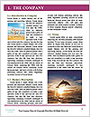 0000082821 Word Template - Page 3
