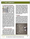 0000082823 Word Template - Page 3