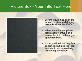 0000082832 PowerPoint Template - Slide 13