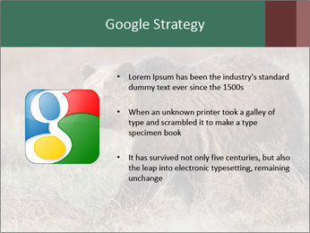 0000082844 PowerPoint Template - Slide 10
