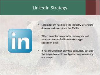 0000082844 PowerPoint Templates - Slide 12