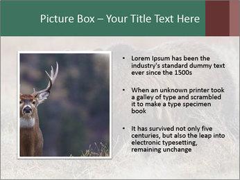0000082844 PowerPoint Templates - Slide 13