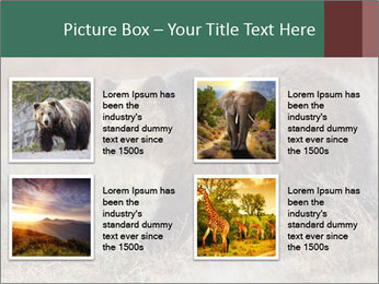 0000082844 PowerPoint Template - Slide 14