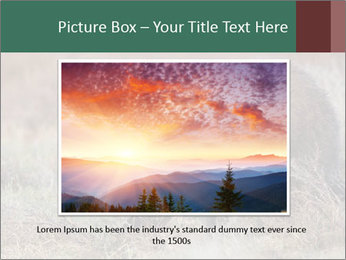 0000082844 PowerPoint Templates - Slide 15