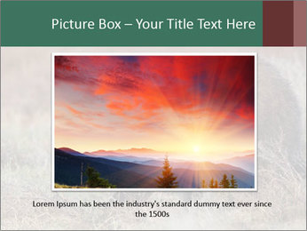 0000082844 PowerPoint Template - Slide 16
