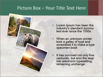 0000082844 PowerPoint Templates - Slide 17