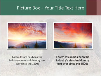 0000082844 PowerPoint Templates - Slide 18