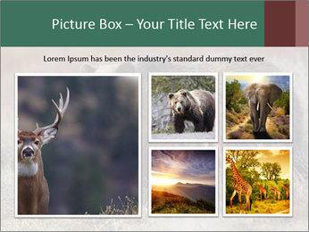 0000082844 PowerPoint Templates - Slide 19
