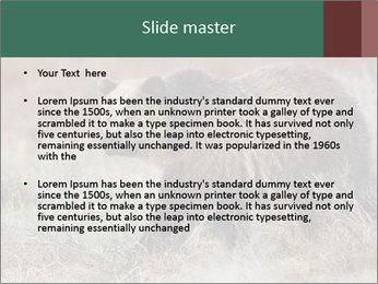 0000082844 PowerPoint Templates - Slide 2