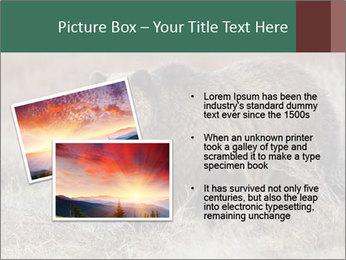 0000082844 PowerPoint Templates - Slide 20