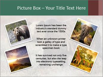 0000082844 PowerPoint Templates - Slide 24