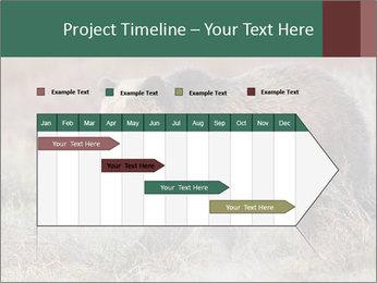 0000082844 PowerPoint Templates - Slide 25