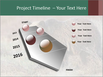 0000082844 PowerPoint Template - Slide 26