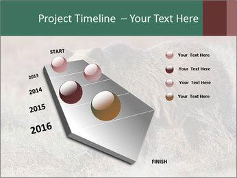 0000082844 PowerPoint Templates - Slide 26