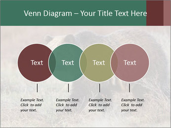 0000082844 PowerPoint Templates - Slide 32