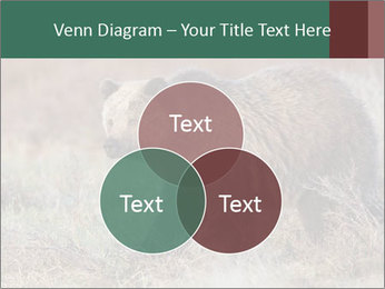 0000082844 PowerPoint Template - Slide 33
