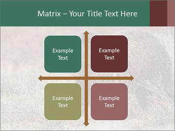0000082844 PowerPoint Templates - Slide 37