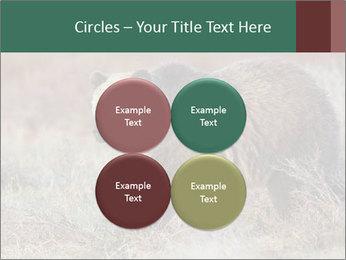 0000082844 PowerPoint Templates - Slide 38