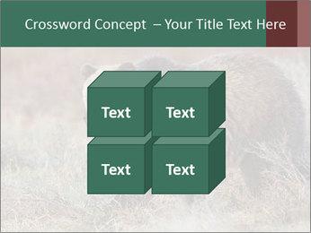 0000082844 PowerPoint Templates - Slide 39