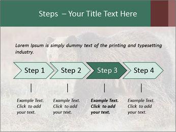 0000082844 PowerPoint Templates - Slide 4