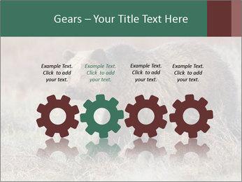 0000082844 PowerPoint Templates - Slide 48