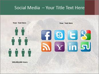 0000082844 PowerPoint Templates - Slide 5
