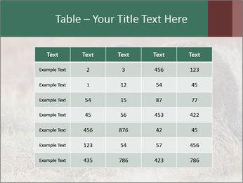 0000082844 PowerPoint Templates - Slide 55