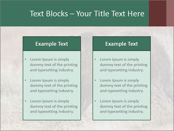 0000082844 PowerPoint Templates - Slide 57