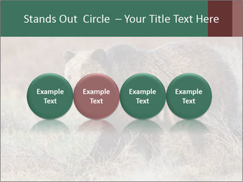 0000082844 PowerPoint Template - Slide 76
