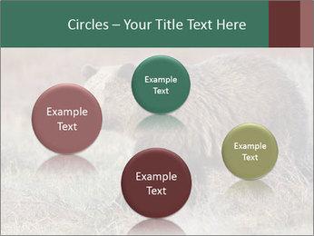 0000082844 PowerPoint Templates - Slide 77