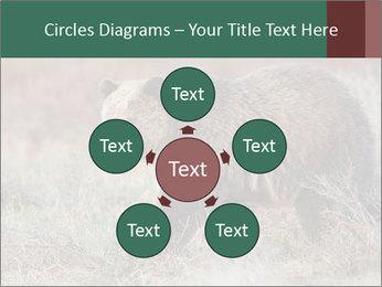 0000082844 PowerPoint Templates - Slide 78
