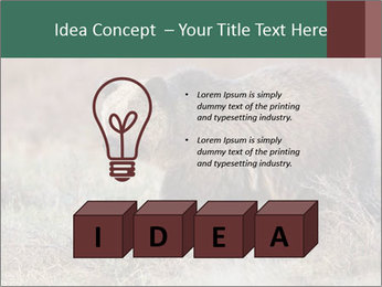 0000082844 PowerPoint Template - Slide 80