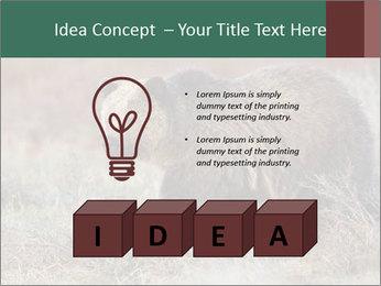 0000082844 PowerPoint Templates - Slide 80