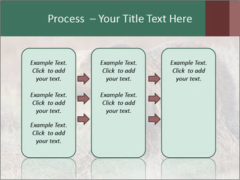 0000082844 PowerPoint Templates - Slide 86