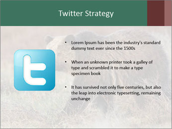0000082844 PowerPoint Template - Slide 9