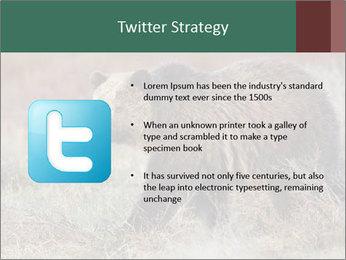 0000082844 PowerPoint Templates - Slide 9