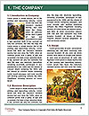 0000082844 Word Template - Page 3