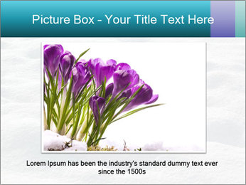 0000082847 PowerPoint Template - Slide 16