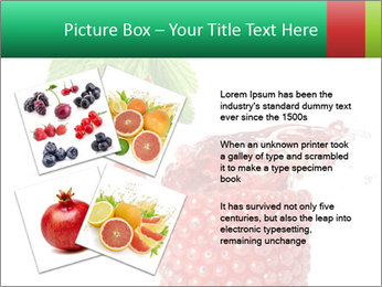 0000082848 PowerPoint Template - Slide 23