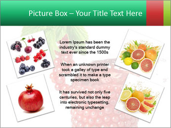 0000082848 PowerPoint Template - Slide 24