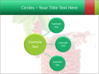 0000082848 PowerPoint Template - Slide 79