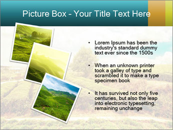 0000082850 PowerPoint Templates - Slide 17