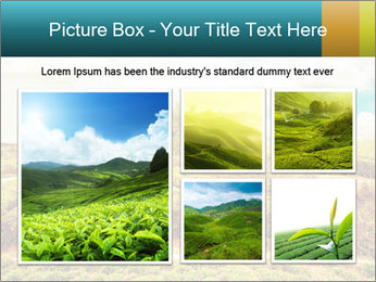 0000082850 PowerPoint Templates - Slide 19