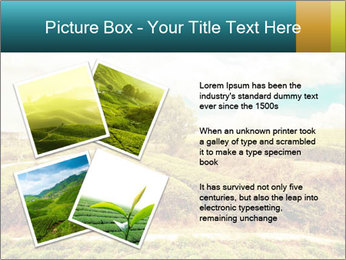 0000082850 PowerPoint Templates - Slide 23