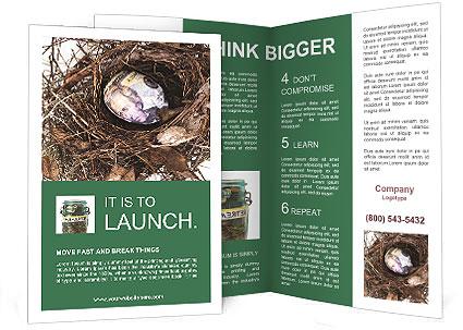 0000082851 Brochure Template